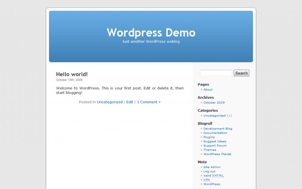 Website Demo Homepage
